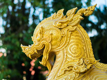 Χρυσό κεφάλι singha με το υπόβαθρο Στοκ Φωτογραφία