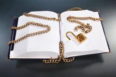 χρυσό κλείδωμα αλυσίδων βιβλίων Στοκ φωτογραφία με δικαίωμα ελεύθερης χρήσης