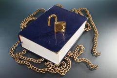 χρυσό κλείδωμα αλυσίδων βιβλίων Στοκ Εικόνα