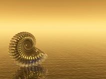 χρυσό κοχύλι Στοκ Εικόνα