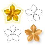 Χρυσό λουλούδι πέντε σχεδίων μετάλλων πέταλο Στοκ εικόνες με δικαίωμα ελεύθερης χρήσης
