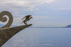 Χρυσό μπροστινό τόξο αετών Στοκ εικόνες με δικαίωμα ελεύθερης χρήσης