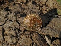 Χρυσό νόμισμα κομματιών στη ραγισμένη γη Συμβολική εικόνα του εικονικού νομίσματος στοκ εικόνα