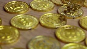 Χρυσό νόμισμα φτερών απόθεμα βίντεο