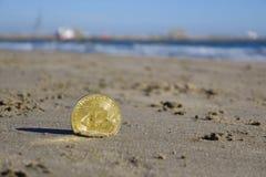 Χρυσό νόμισμα bitcoin Στοκ φωτογραφία με δικαίωμα ελεύθερης χρήσης