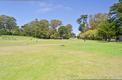 Χρυσό πάρκο πυλών, Σαν Φρανσίσκο Στοκ φωτογραφία με δικαίωμα ελεύθερης χρήσης
