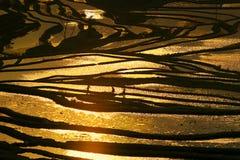 χρυσό πεζούλι Στοκ φωτογραφία με δικαίωμα ελεύθερης χρήσης
