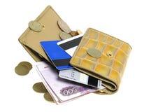 χρυσό πορτοφόλι τσεπών στοκ εικόνες