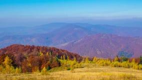 Χρυσό πρωί φθινοπώρου στα βουνά απόθεμα βίντεο