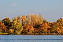 Χρυσό τοπίο φθινοπώρου από μια λίμνη Στοκ φωτογραφία με δικαίωμα ελεύθερης χρήσης