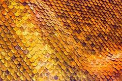 Χρυσό υπόβαθρο κλιμάκων ψαριών Στοκ Φωτογραφία