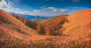 Χρυσό φθινόπωρο Καρπάθια βουνά στοκ φωτογραφία με δικαίωμα ελεύθερης χρήσης