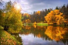 Χρυσό φθινόπωρο κινητήριο Στοκ Εικόνες