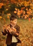 Χρυσό φθινόπωρο στα ξύλα, και ένα μικρό αγόρι Στοκ Φωτογραφίες