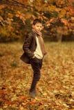 Χρυσό φθινόπωρο στα ξύλα, και ένα μικρό αγόρι Στοκ φωτογραφίες με δικαίωμα ελεύθερης χρήσης