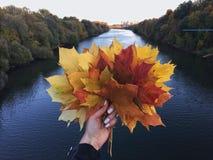 Χρυσό φθινόπωρο στη Ρωσία στοκ φωτογραφίες