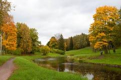 Χρυσό φθινόπωρο Pavlovsk στοκ εικόνα