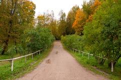 Χρυσό φθινόπωρο Pavlovsk στοκ εικόνα με δικαίωμα ελεύθερης χρήσης