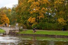 Χρυσό φθινόπωρο Pavlovsk στοκ φωτογραφίες με δικαίωμα ελεύθερης χρήσης