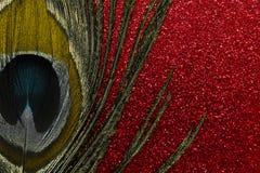 Χρυσό φτερό peacock στο κόκκινο λαμπρό υπόβαθρο στοκ φωτογραφίες