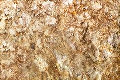 Χρυσό φύλλο στοκ φωτογραφία με δικαίωμα ελεύθερης χρήσης