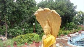 Χρυσό χρώμα άγαλμα Λόρδου Βούδας Στοκ εικόνες με δικαίωμα ελεύθερης χρήσης
