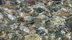 χρυσό ύδωρ επιφάνειας κυματώσεων Στοκ Φωτογραφίες