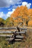 Χρυσό Aspens και ξύλινος φράκτης Στοκ φωτογραφία με δικαίωμα ελεύθερης χρήσης