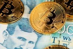Χρυσό Bitcoin με τα σερβικά τραπεζογραμμάτια Πορτρέτο του τέσλα της Nikola επιστημόνων στοκ φωτογραφία με δικαίωμα ελεύθερης χρήσης