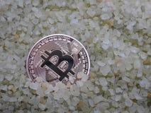 Χρυσό Bitcoin στους μικρούς βράχους στοκ φωτογραφίες με δικαίωμα ελεύθερης χρήσης