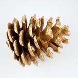 Χρυσό pinecone διακόσμηση Χριστουγέννων χρυσή η ανασκόπηση απομόνωσε το λευκό Στοκ Φωτογραφίες