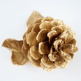 Χρυσό pinecone και χρυσό φύλλο τα Χριστούγεννα διακοσμούν τις φρέσκες βασικές ιδέες διακοσμήσεων η ανασκόπηση απομόνωσε το λευκό Στοκ εικόνες με δικαίωμα ελεύθερης χρήσης