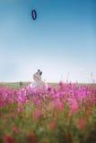 Χρυσό Retriever σκυλιών στα λουλούδια Στοκ φωτογραφίες με δικαίωμα ελεύθερης χρήσης
