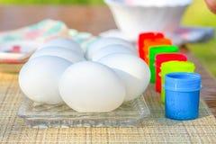 Χρωματίζοντας αυγό Πάσχας στοκ εικόνες με δικαίωμα ελεύθερης χρήσης