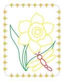 Χρωματίζοντας βιβλίο των χαριτωμένων ναρκίσσων ανοίξεων λουλουδιών ελεύθερη απεικόνιση δικαιώματος