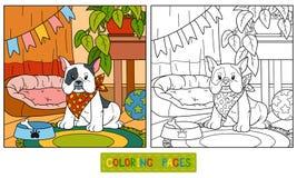 Χρωματίζοντας βιβλίο (γαλλικά μπουλντόγκ και υπόβαθρο) ελεύθερη απεικόνιση δικαιώματος