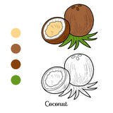 Χρωματίζοντας βιβλίο: φρούτα και λαχανικά (καρύδα) απεικόνιση αποθεμάτων