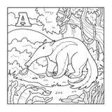 Χρωματίζοντας βιβλίο (anteater), άχρωμη απεικόνιση (γράμμα Α) διανυσματική απεικόνιση