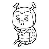 Χρωματίζοντας βιβλίο, Ladybug διανυσματική απεικόνιση