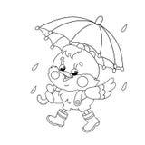Χρωματίζοντας περίληψη σελίδων ενός ευτυχούς κοτόπουλου που περπατά στη βροχή Ελεύθερη απεικόνιση δικαιώματος