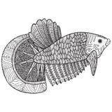 Χρωματίζοντας σελίδα με τα ψάρια zentangle Στοκ φωτογραφία με δικαίωμα ελεύθερης χρήσης