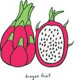 Χρωματίζοντας σελίδα φρούτων δράκων Γραφική διανυσματική ζωηρόχρωμη τέχνη φ doodle Στοκ εικόνα με δικαίωμα ελεύθερης χρήσης
