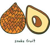 Χρωματίζοντας σελίδα φρούτων φιδιών Γραφική διανυσματική ζωηρόχρωμη τέχνη FO doodle Στοκ Εικόνες