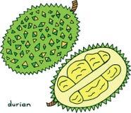 Χρωματίζοντας σελίδα φρούτων Durian Γραφική διανυσματική ζωηρόχρωμη τέχνη φ doodle Στοκ Φωτογραφία