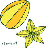 Χρωματίζοντας σελίδα Starfruit Γραφική διανυσματική ζωηρόχρωμη τέχνη doodle για Στοκ Εικόνα