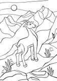 Χρωματίζοντας σελίδες Ζώα Λίγη χαριτωμένη αντιλόπη Στοκ Εικόνα