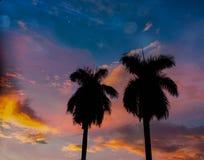 ηλιοβασίλεμα - δύο στοκ φωτογραφία με δικαίωμα ελεύθερης χρήσης