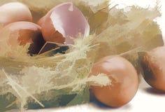 Χρωματίζοντας τα αυγά κοντά επάνω Στοκ φωτογραφία με δικαίωμα ελεύθερης χρήσης
