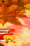 Χρωματίζοντας φύλλα πτώσης Στοκ Φωτογραφίες