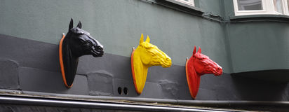 χρωματισμένα άλογα Στοκ Εικόνες